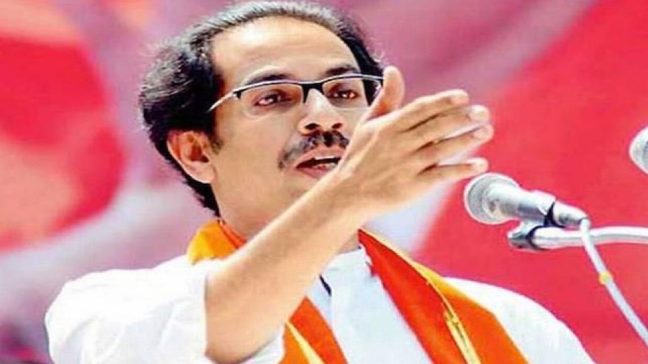 uddhav thackeray, shivsena, Shivsena on NCP, Hallabol