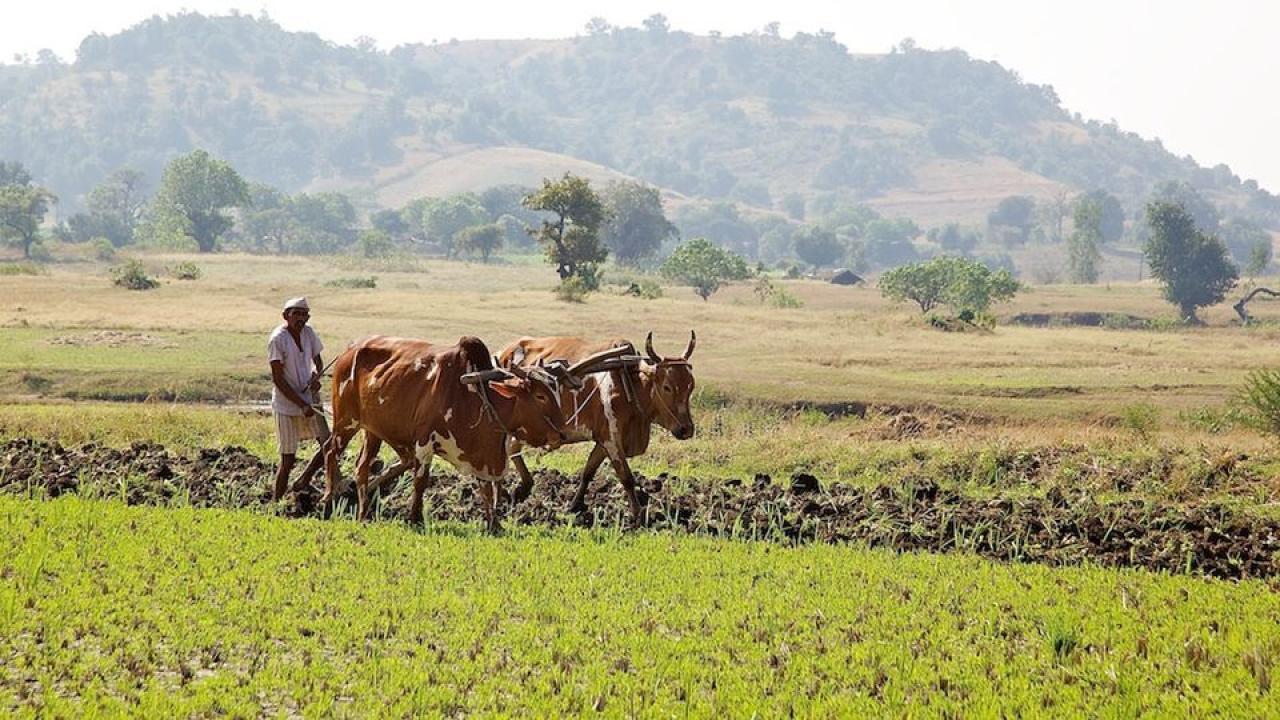 Union Budget 2018, Modi Budget 2018, Arun Jeaitely , Farmers income