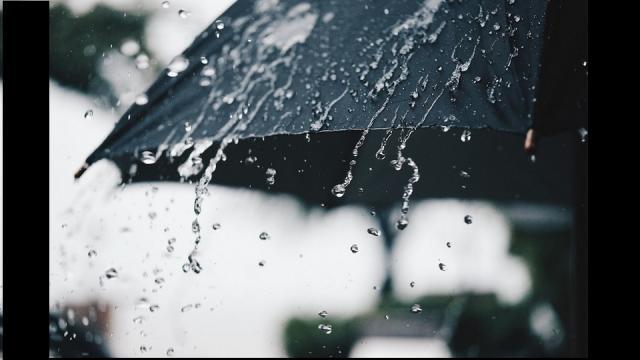 monsoon, country , rain