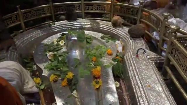 mahashivratri, bhima shankar,