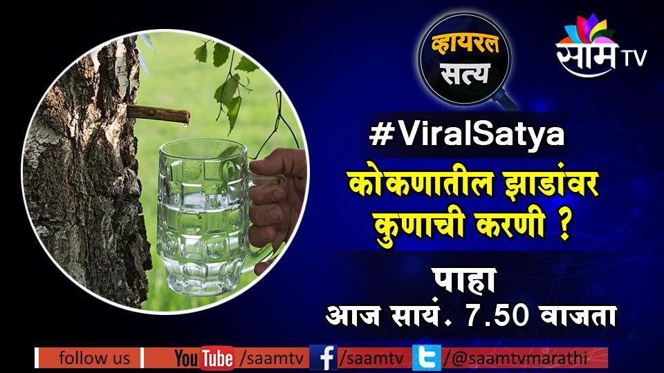 Viral Satya , Marathi news, Saam Tv, honted trees , konkan