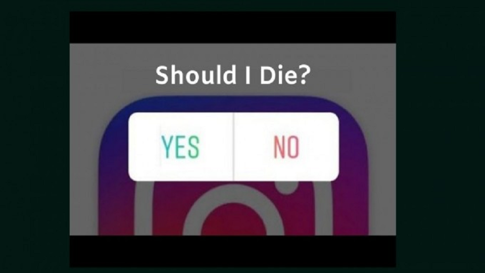 instagram, instapoll