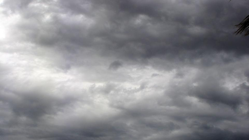monsoon 2019, konkan