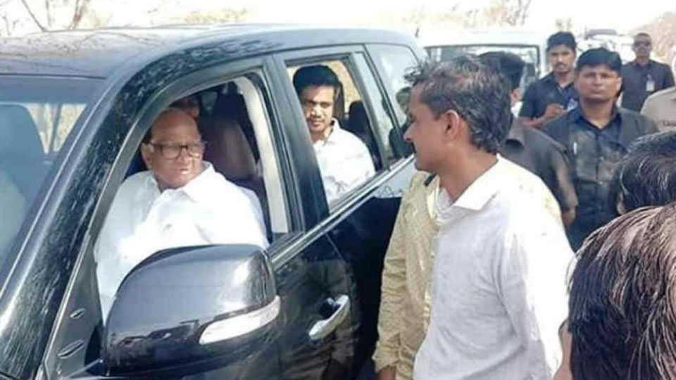 Sharad Pawar , Rohit Pawar , NCP