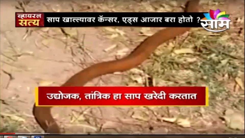 Viral Satya , Saam Tv, Marathi News