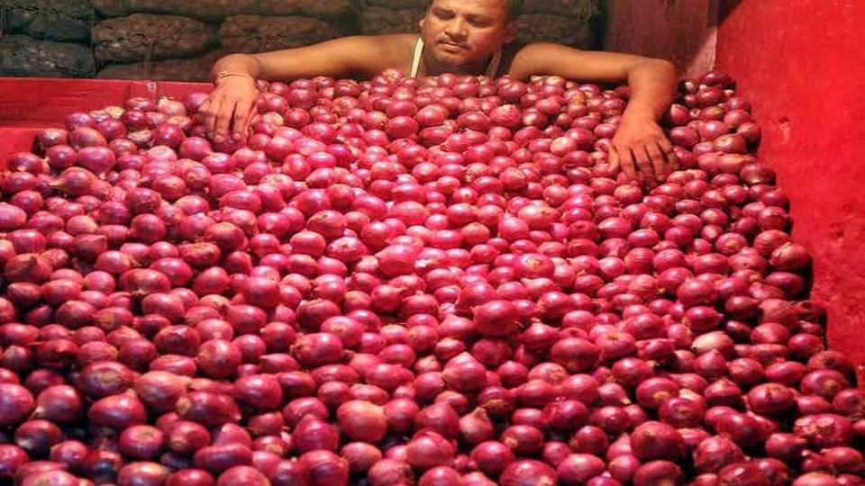 onion rates, Export duty , APMC, NAshik, Lasalgaon,