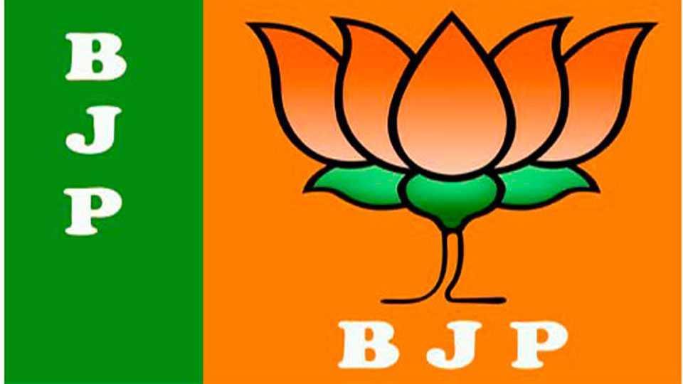 BJP, actors and cricketers