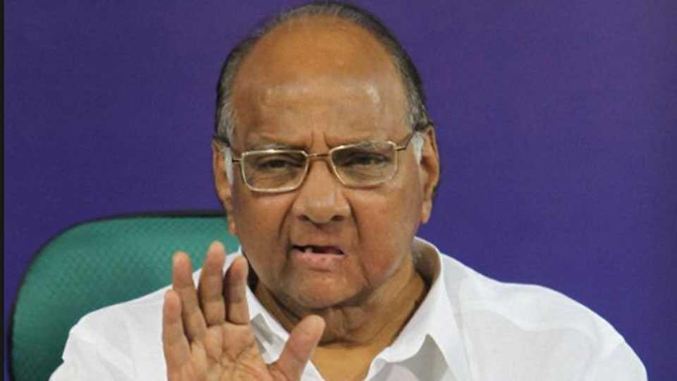 sharad pawar comment on devendra fadanvis