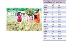 employment , nagpur