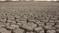 Collectors asked to submit weekly reports on drought