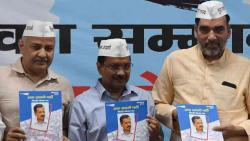 AAP manifesto promises to secure full statehood for Delhi