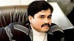 Dawood's nephew arrested at Mumbai airport while trying to flee India: Cops
