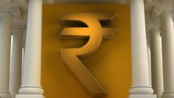 Rupee fall temporary, long-term path stable: Top official