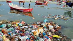 Drying Ganga could stall food security and prevent achieving SDGs