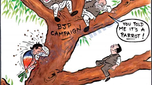 Raj Thackeray Lok Sabha Campaign