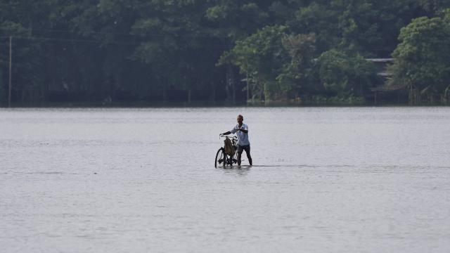 A flood affected villager wades next to his bicycle through a submerged road at the flood affected Morigoan district, in Indias the northeastern state of Assam on August 15. 2017.