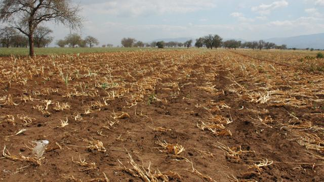 Maharashtra to shift to scientific parameters for declaring drought