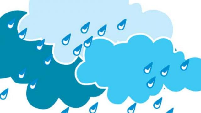 Monsoon will cover State by June 25: IMD
