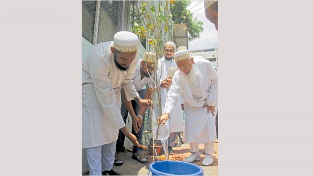 A plantation drive was held by Janab Abdeali Bhaisaheb, Head of Bohra community of  Burhani Mohalla camp.