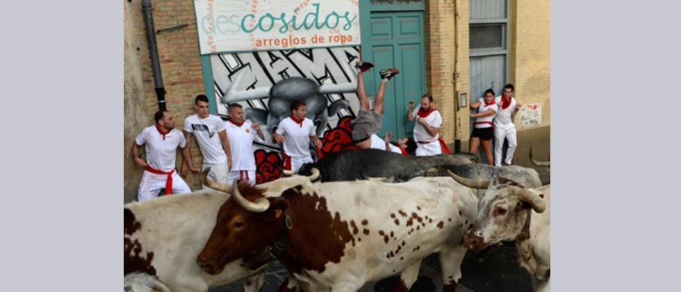 A participant is tossed by a Cebada Gago fighting bull on the first day of the San Fermin bull run festival in Pamplona, northern Spain on July 7, 2017