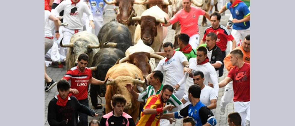 Participants run ahead of Cebada Gago's fighting bulls on the first day of the San Fermin bull run festival in Pamplona, northern Spain.