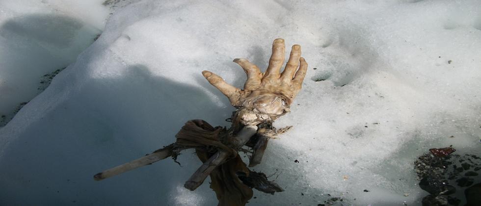 This handout picture taken by Daniel Roche, who discovered body remains on the Mont Blanc, shows a hand, which could belong to a victim of one of two Air India crashes which occured in 1950 and 1966, on the Mont Blanc, French Alps. AFP / DANIEL ROCHE