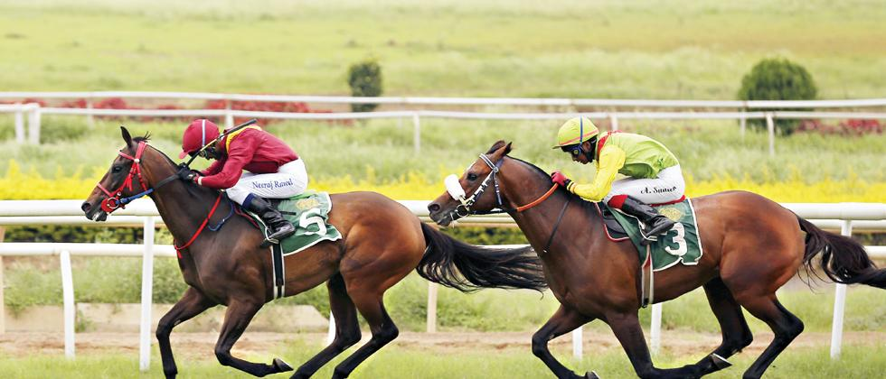 Galloping ahead: Traheren ridden by jockey Neeraj Rawal races towards the finish line during the Fair Haven Trophy race at Pune Race Course on Thursday.