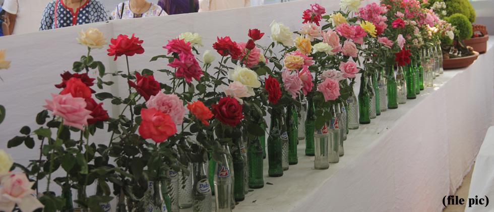 Empress Garden flower exhibition to mark its 21st year