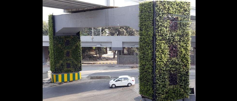 Vertical gardens are catching up the fantasy giving a soothing look as the spaces crunch in the urban areas