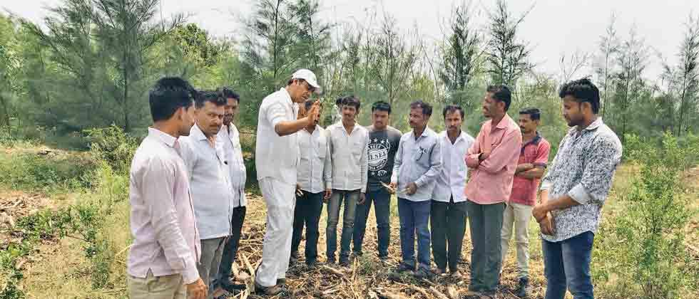 Passion turns ORGANIC FARMING INTO SUCCESS STORY