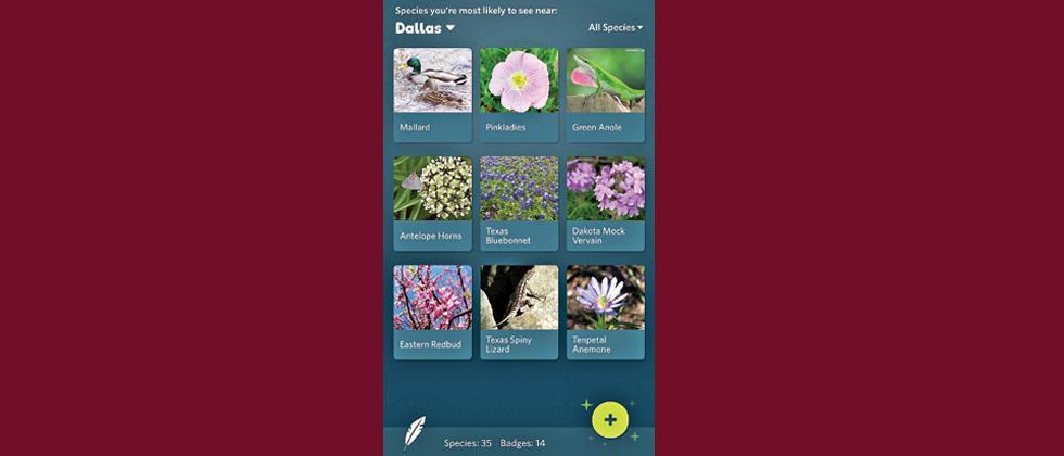 TECH TALK: Detect flora and fauna