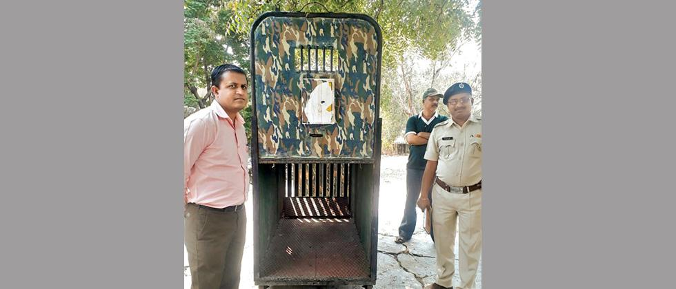 5 new cages for leopards at MLRC