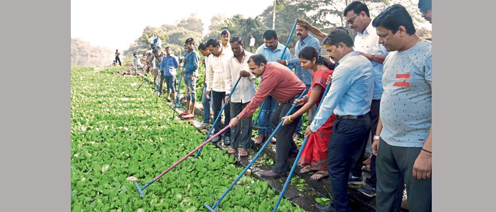 PCMC chief impressed by NGO's hyacinth-bulb cleaning work