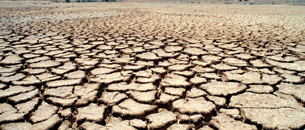 Drought review team to visit Purandar today
