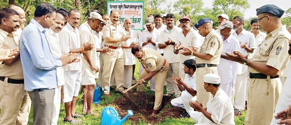 Over 1,000 saplings of custard apple were planted in a tree plantation drive at Yerwada central prison on Sunday.