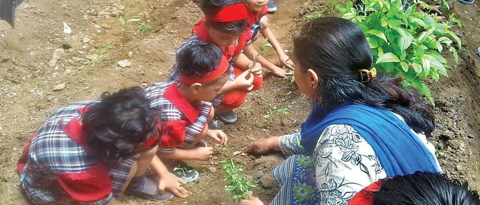 The students plant saplings in the school premises on Thursday.