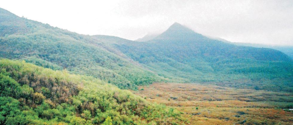 A file photo of Dongarwadi village in Tamhini ghat.