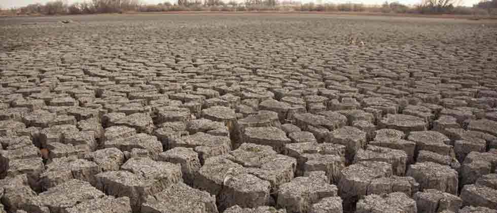 Activist demands inclusion of tribal belt in drought-hit areas