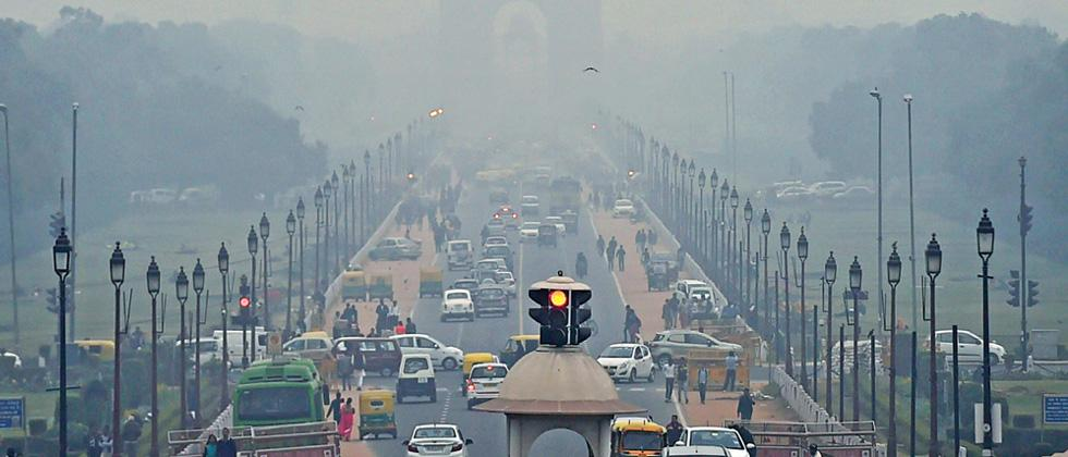 Afforestation is the key to clear deadly smog affecting the national capital
