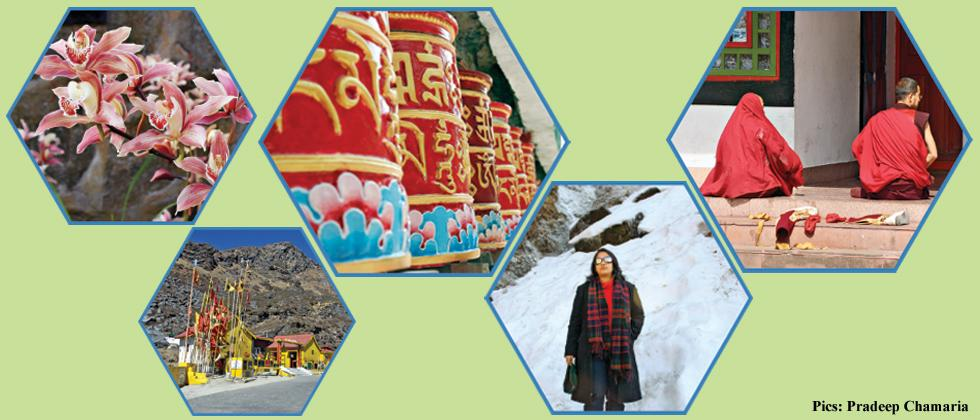 The Jewel of Sikkim
