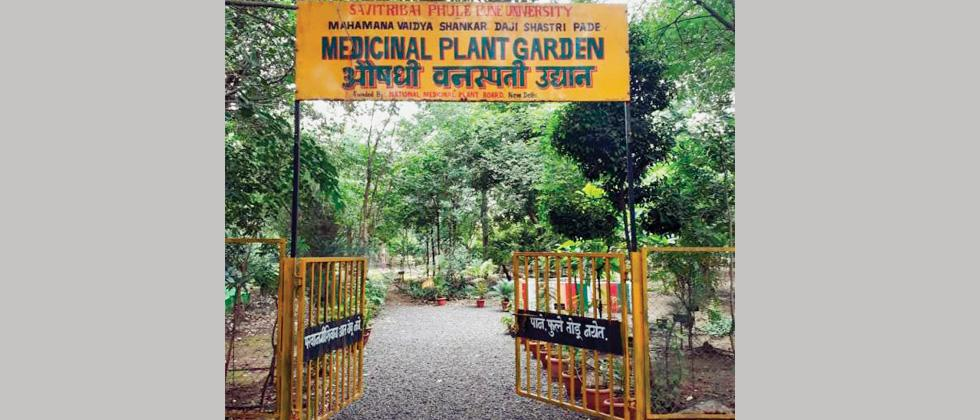 SPPU develops medicinal garden