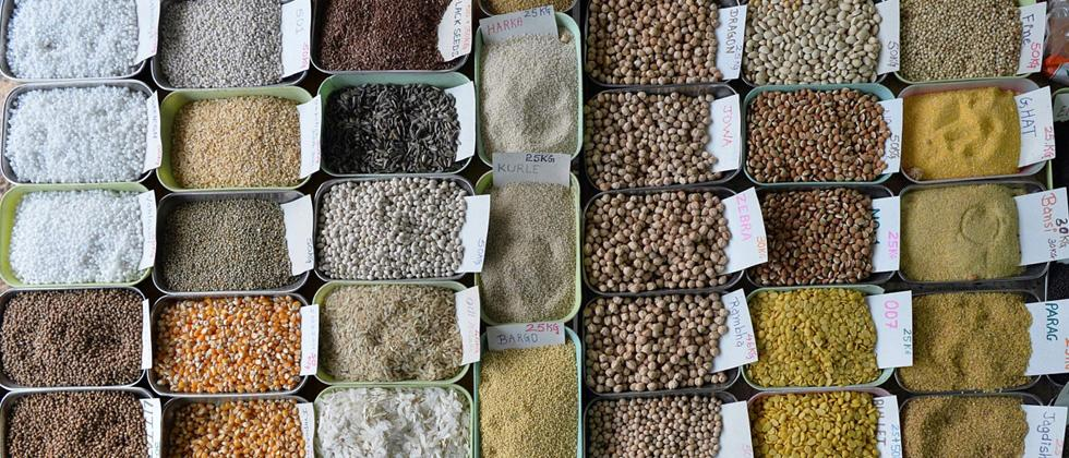 WPI inflation in July slips to 25-month low of 1.08 pc on cheaper food items, fuel