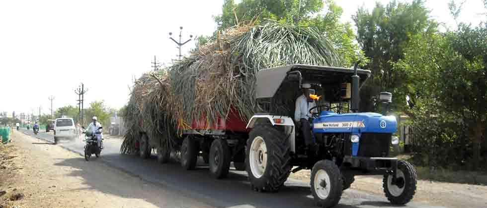 Ban on transportation of fodder out of Pune