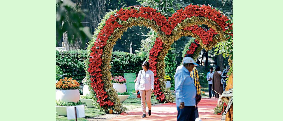 18th flower show kicks off at Empress Garden