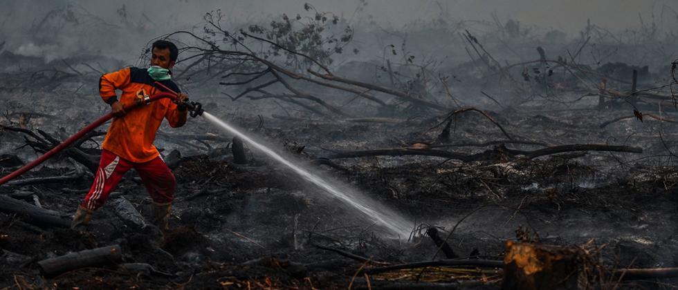 Hundreds of schools shut as forest-fire haze blankets SE Asia