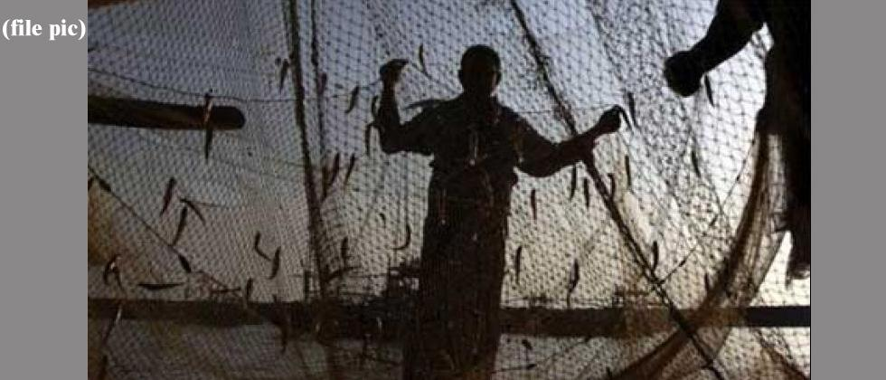 Trawlers with LEDs destroying marine ecosystem: Fisherfolk