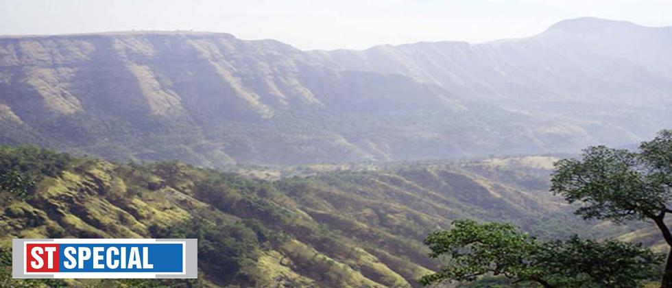 'Floral species in Western Ghats are endangered'