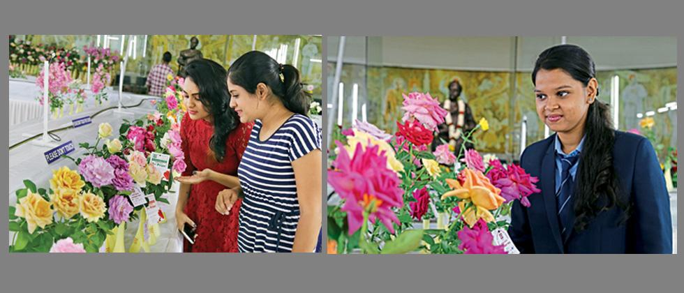 Rose exhibition begins in city