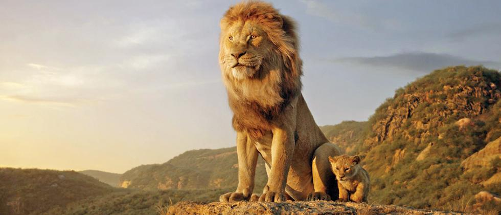 The Lion King: The magic unfolds (Reviews)