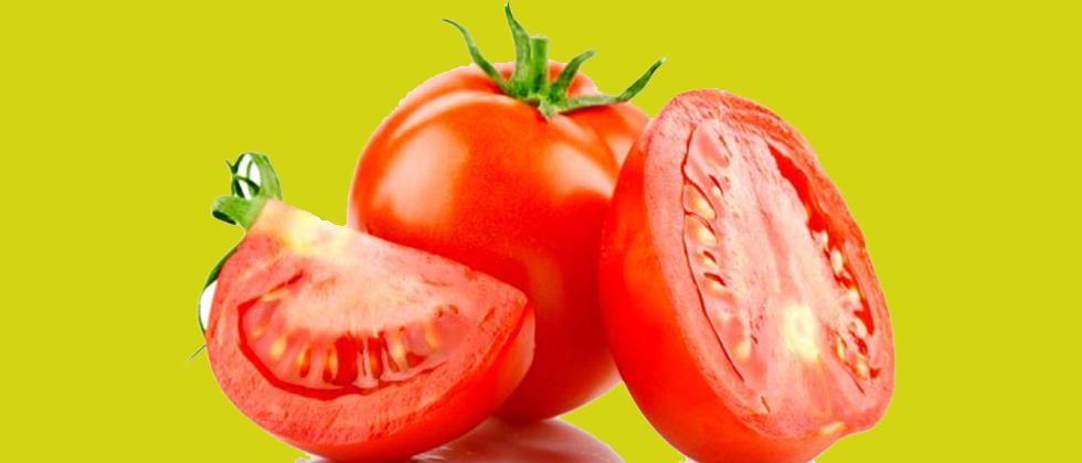 Steep fall in tomato prices